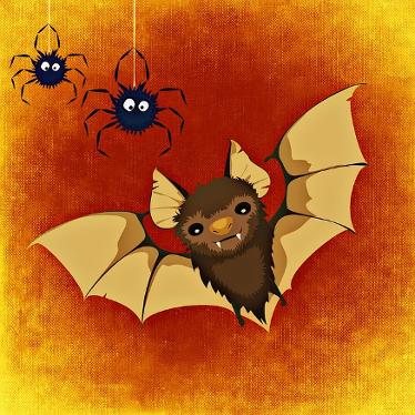image-pixabay-bat-967793_640